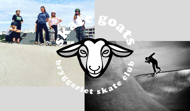 Skate-Goats-2018_pdf-2