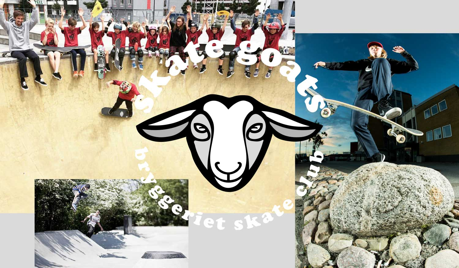 Skate-Goats-2018_pdf-3