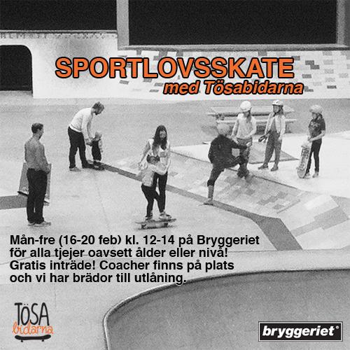 sportlovsskate2015