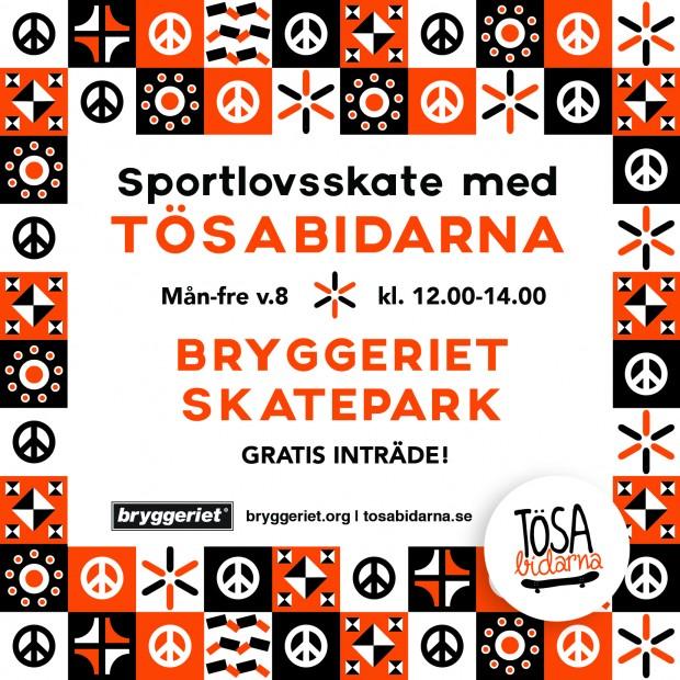 sportlovsskate2017