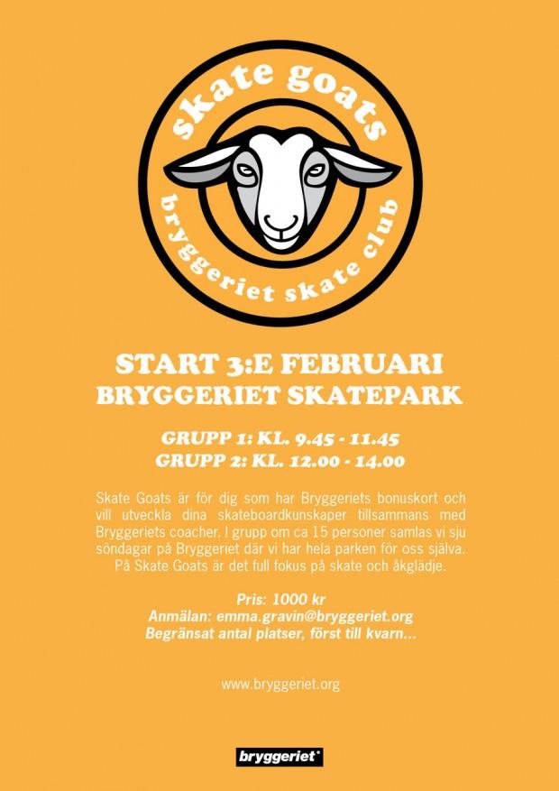 Skate GoatsVT2019