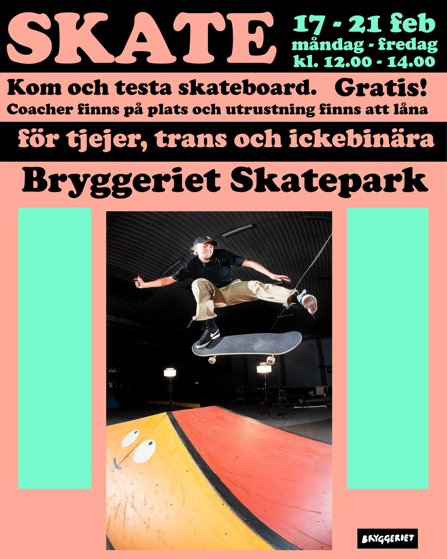 Skate-sportlov
