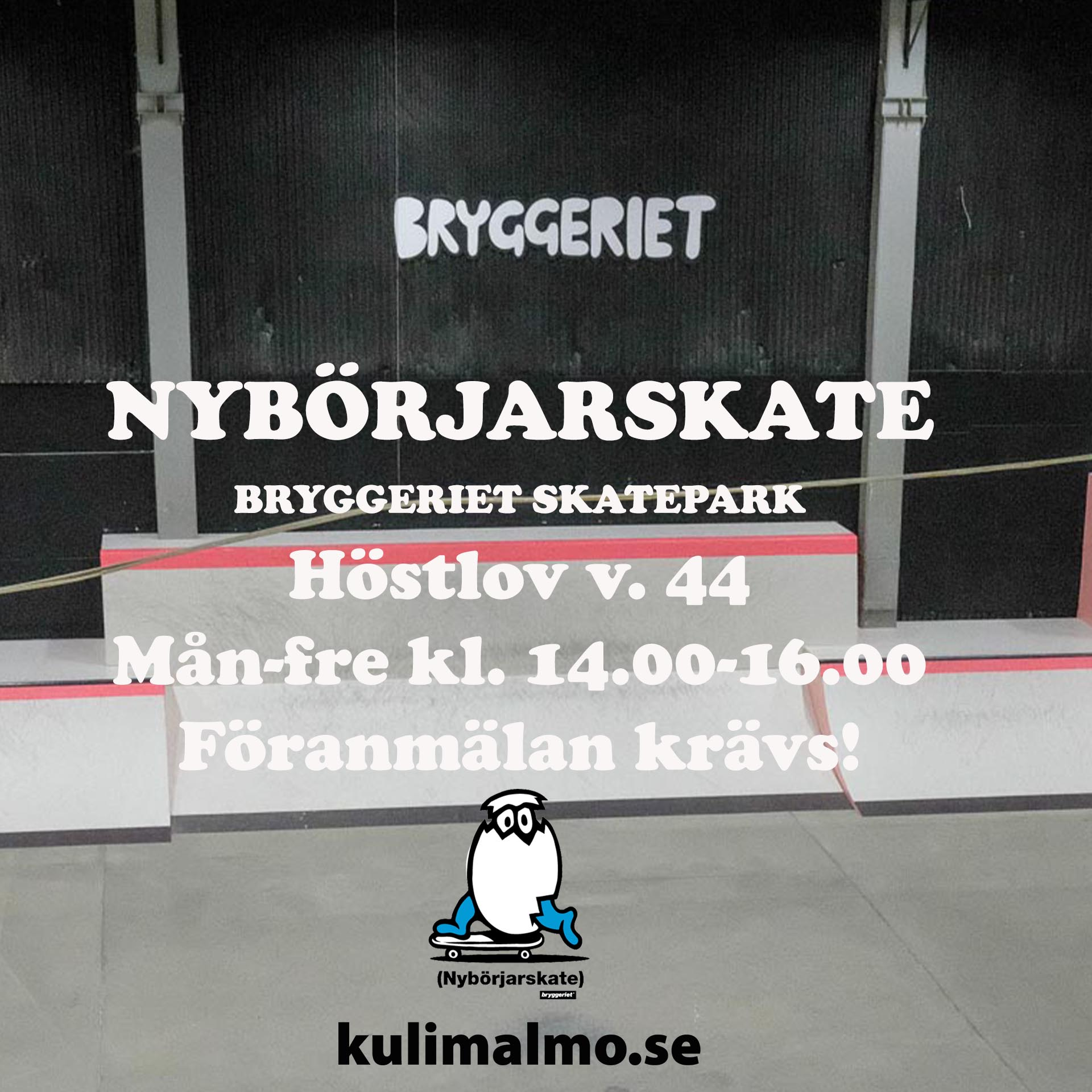 NYBÖRJARSKATEArtboard 5